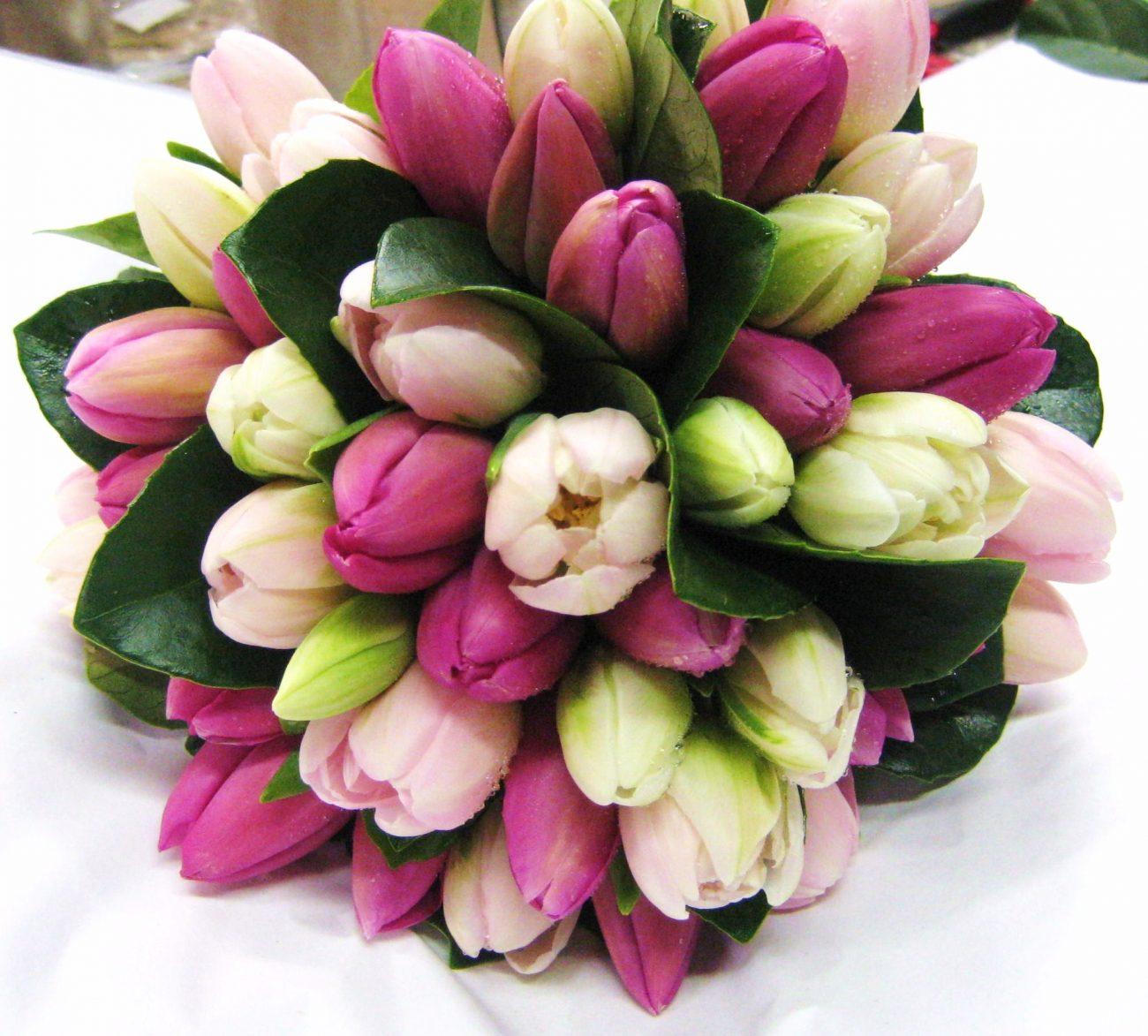Bouquet tulipani – bouquet flowers