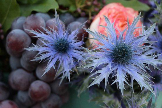 Cassetta con fiori e frutta – IMG 1290