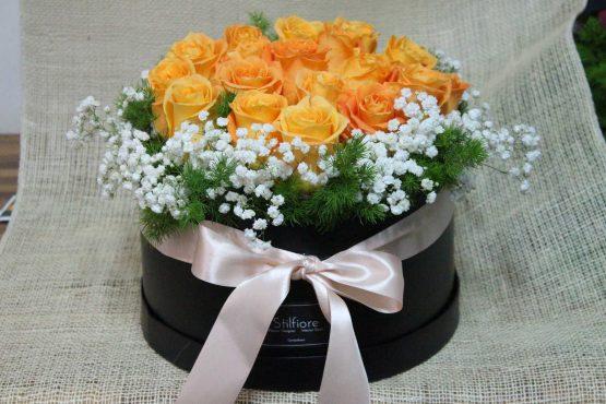 Flowerbox Rose arancio – IMG 1324 copia