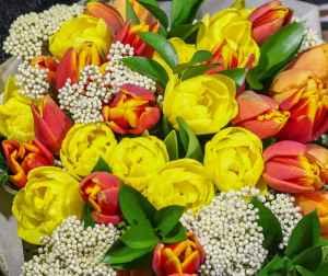Bouquet tulipani arancio – 20200502 122409