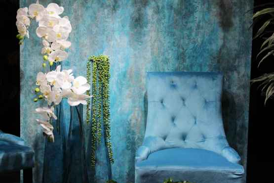 Coppia sedie in velluto – IMG 7033