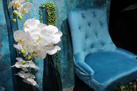 Coppia sedie in velluto – IMG 7036