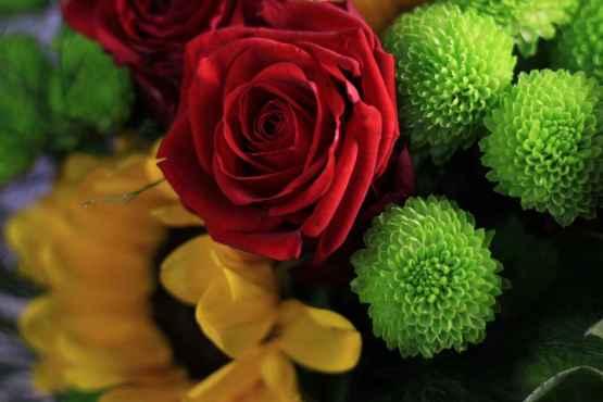 Bouquet di rose e girasoli – IMG 9061 9