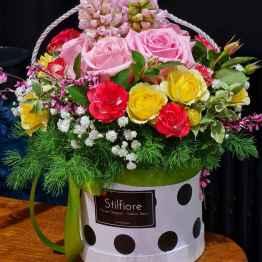 Flowerbox color rose – 20210218 113054 e1613690156373